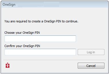 Enter pin screen