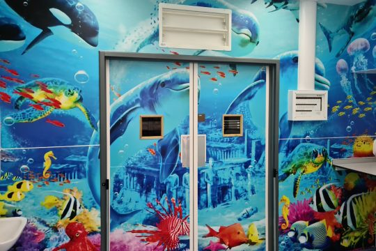 doors to the Paediatric Operating Theatres beautifully painted with an underwater-themed mural