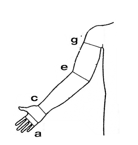 Graphic - arm garment