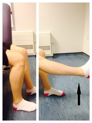 Seated knee flexion and extension exercise
