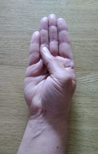 Person with the back of their hand on a table moving their thumb to meet the base of their third finger